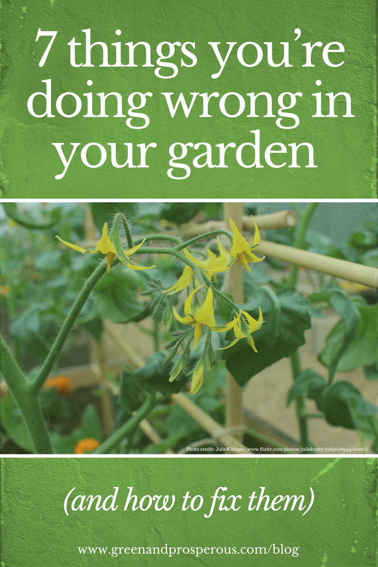 7 things you're doing wrong in your garden.png