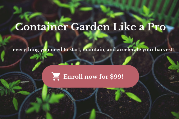 online container gardening course