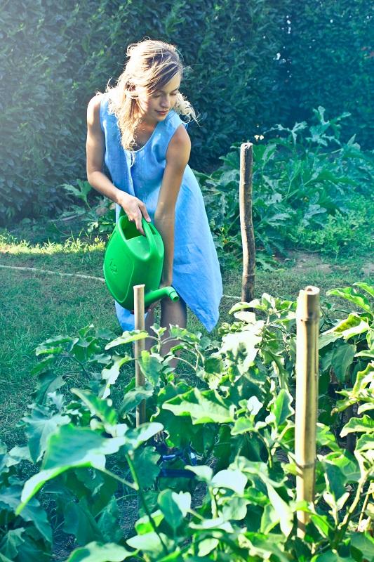 soil amendments for organic gardening