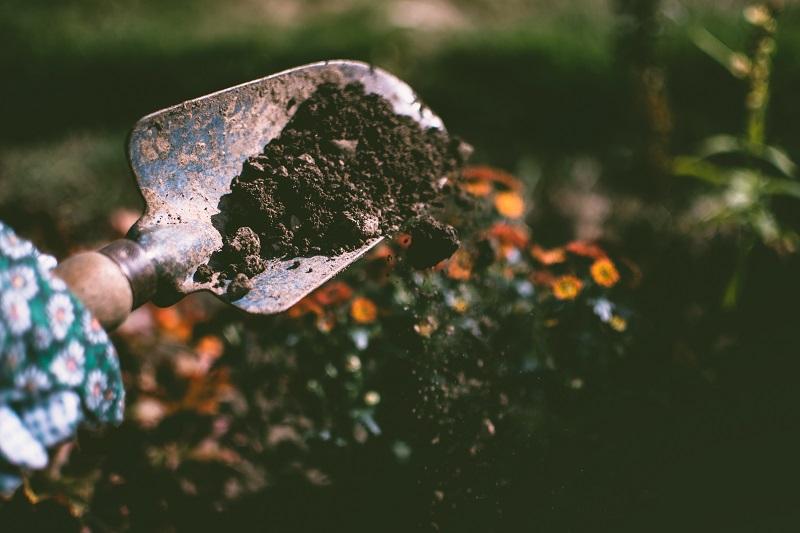 organic soil amendments