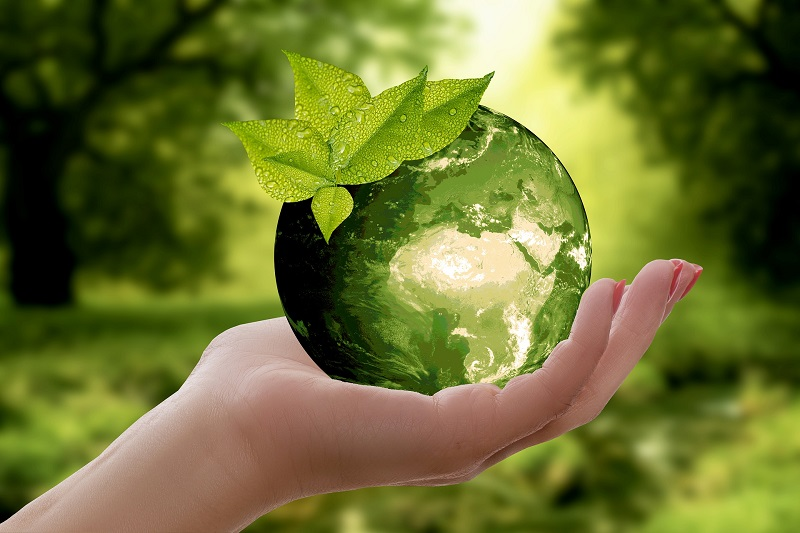 10 ways to consume less and help the planet