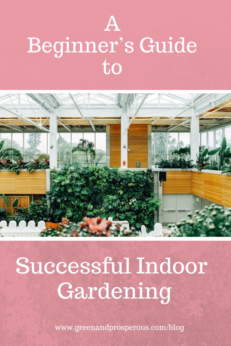 beginner's guide to Successful Indoor Gardening