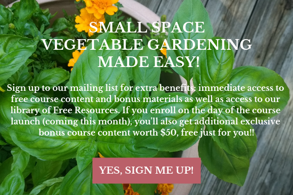 online container gardening course
