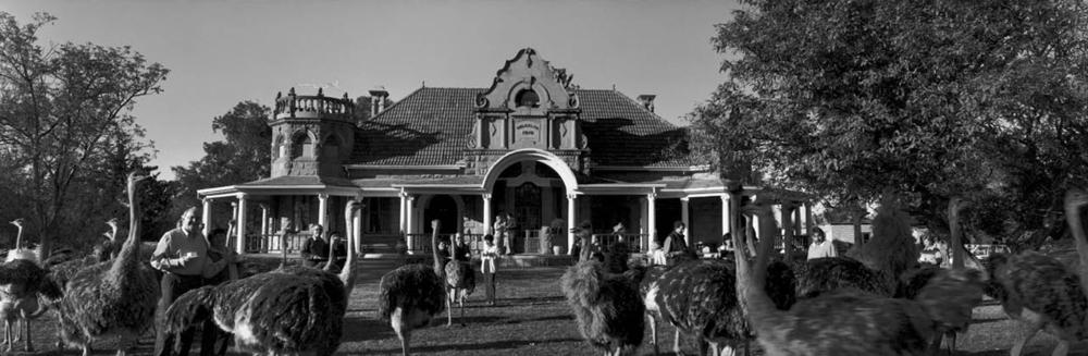 Oudtshoorn, South Africa, 2000