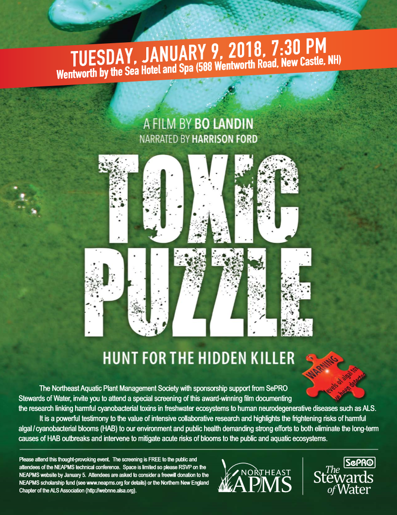 Toxic Puzzle - The Hidden Killer