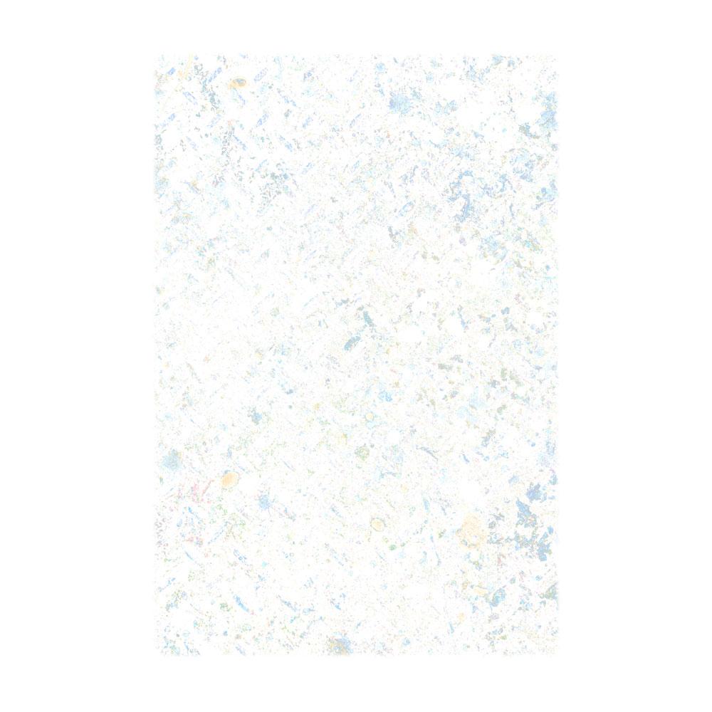 NP1.jpg