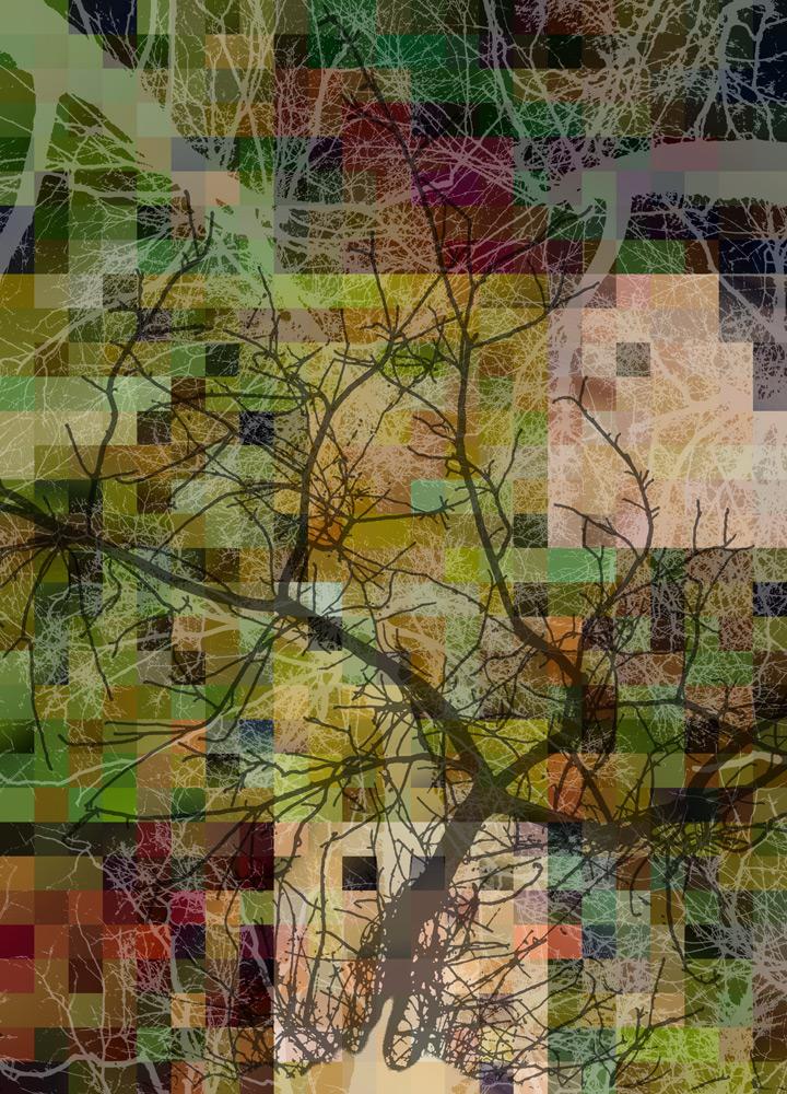 Tree-mosaic-5-copyC.jpg