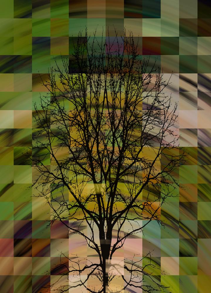 Tree-Mosaic-6.jpg