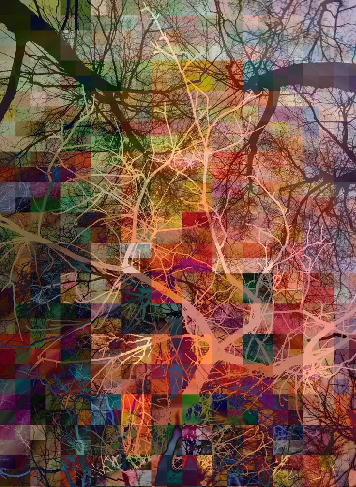 Tree-mosaic-5-copy1.jpg