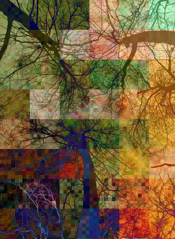 Tree-mosaic-4-copy2.jpg