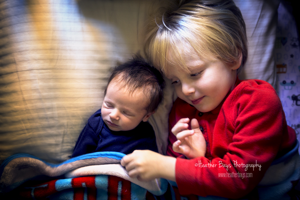 SWEET BROTHERS   To view this gallery click here:   https://heatherbaysphotography.shootproof.com/gallery/3773119