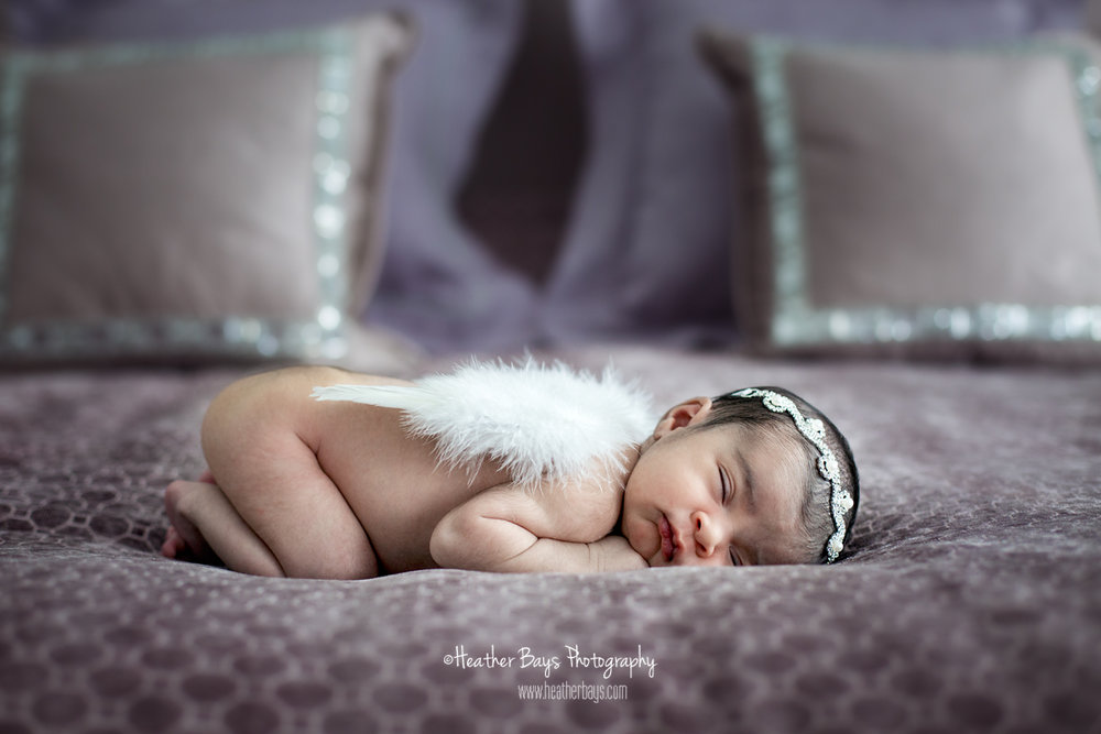 WELCOME HOME LITTLE LADY   To view this gallery click here:   https://heatherbaysphotography.shootproof.com/gallery/4752455