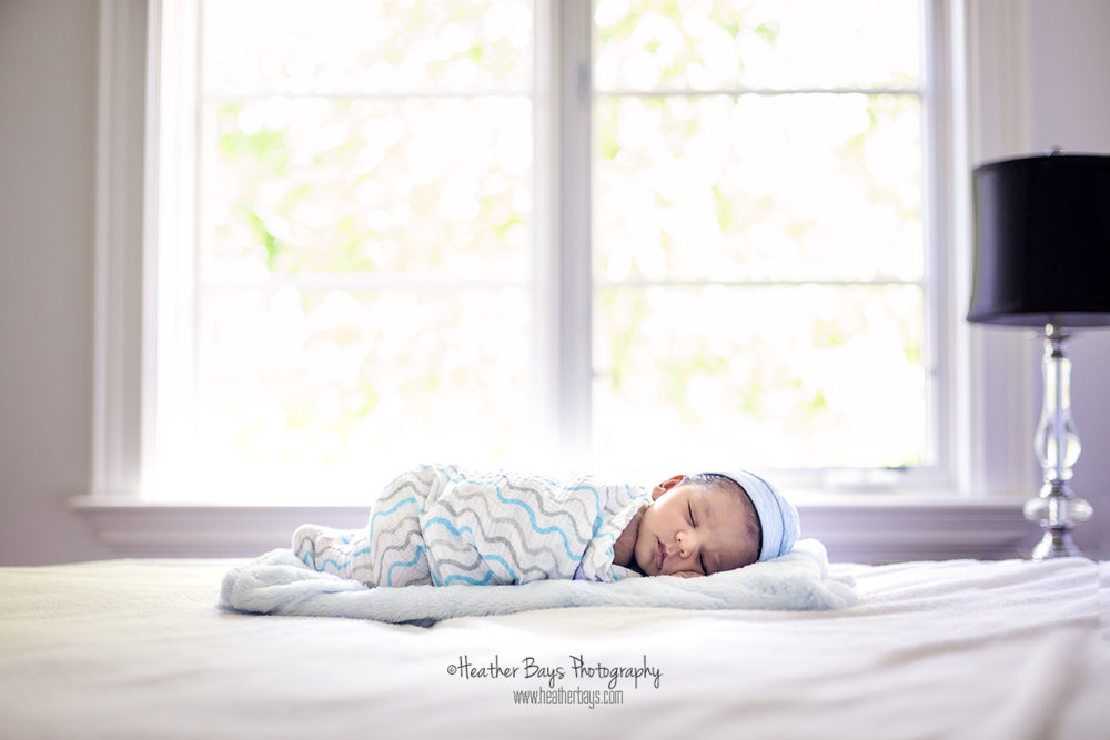 KADEN   To view this gallery click here:   https://heatherbaysphotography.shootproof.com/gallery/4857863