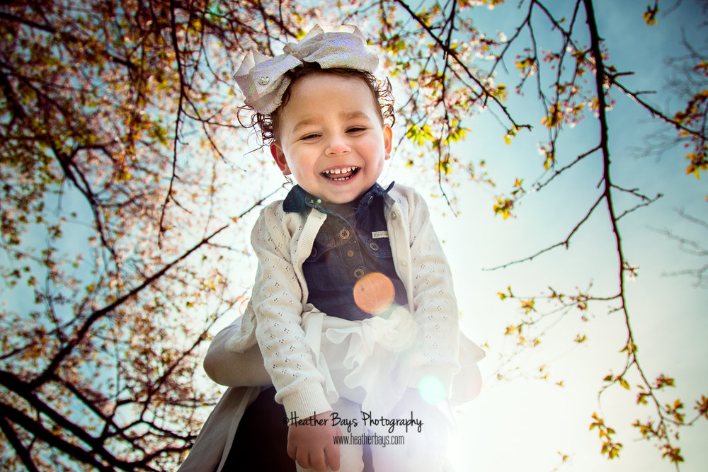 ADDISON   To view this gallery click here:   https://heatherbaysphotography.shootproof.com/gallery/6866209