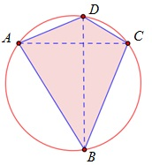 Fig B152.jpg