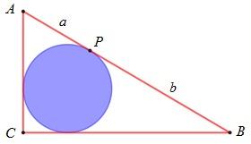 Fig B161.jpg