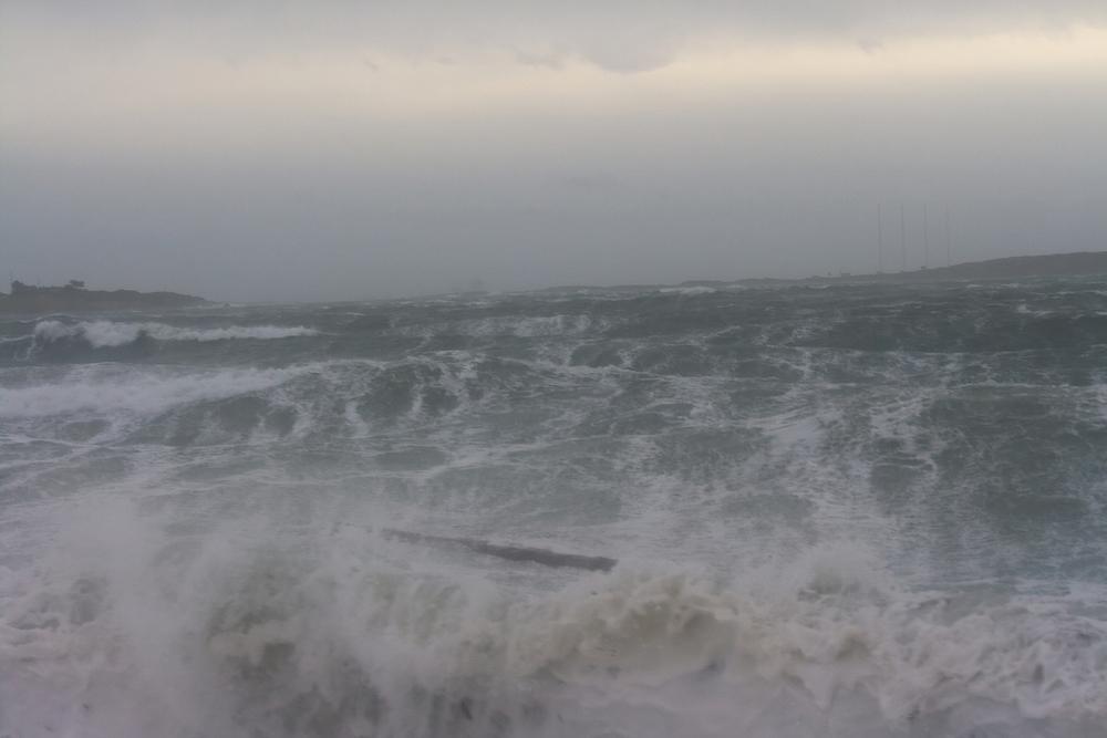 Salish Sea B.C.
