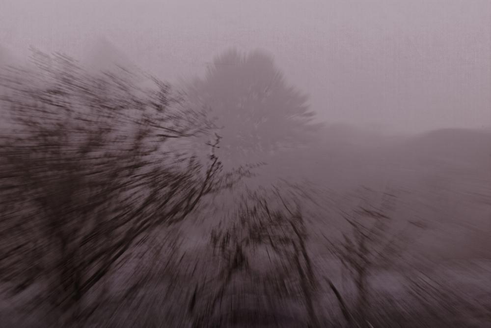 20140125_4478_DxOx.jpg