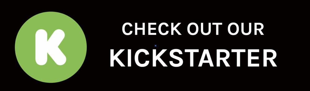 ALMS NYC Kickstarter Link