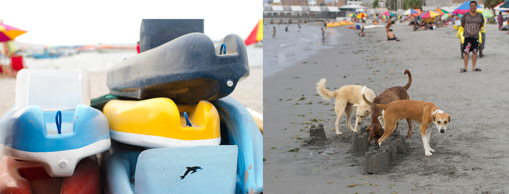 Loved catching this dog pee on someone's masterpiece sandcastle and his owner laughing at it.