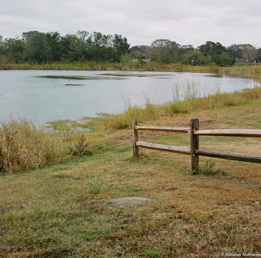 Saddle Creek Park, lake and fence. Mamiya C220, Pentax Digital Spotmeter f11, 1/125 sec, overcast day