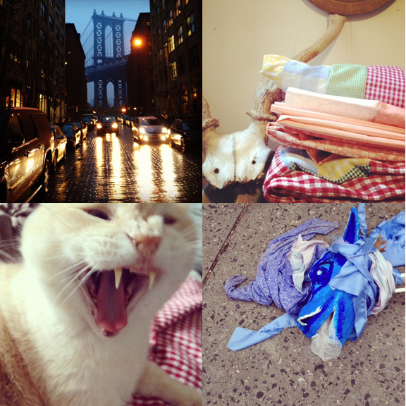1) Working in DUMBO has the advantage of letting me see some great views. January saw some extreme fog, wild rain and snow, and great clouds 2) Quilts are stacking up to be completed. 3) Pit might have been less than thrilled with all the gingham. 4) An unexpected dragon.