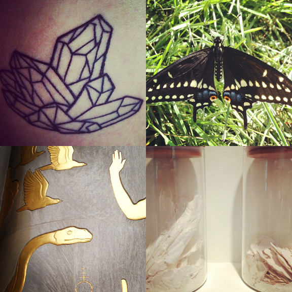 1) New tattoo. 2) Greenwood Cemetery butterfly. 3) Library days. 4) The art in ashes.