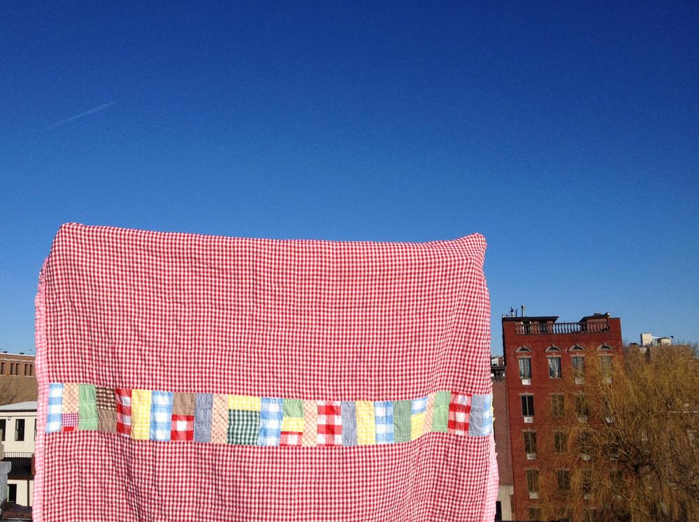 ag stripe.jpg