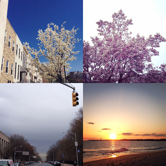 1) Trees blooming in Park Slope... 2) and Kensington. 3) There were a few grey days and April showers. 4) And some spectacular sunsets.