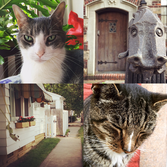 1) Bippi. 2) Dragon. 3) Beach street cat. 4) Tyger.