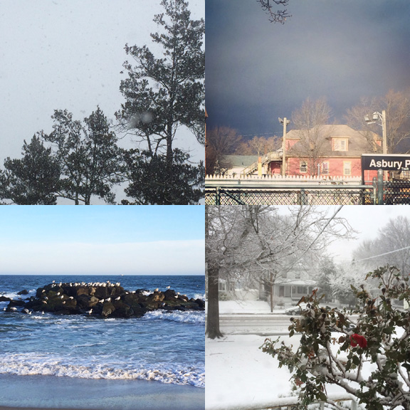 1) snowy back view. 2) Cloudy train view. 3) Sunny beach view. 4) Blizzard rose view.