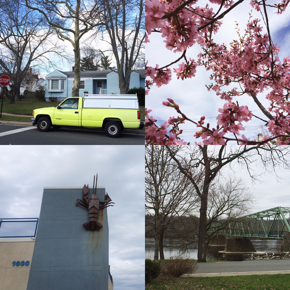 1) Bright truck. 2) Bright blooms. 3) Gloomy lobster. 4) Grey bridge.