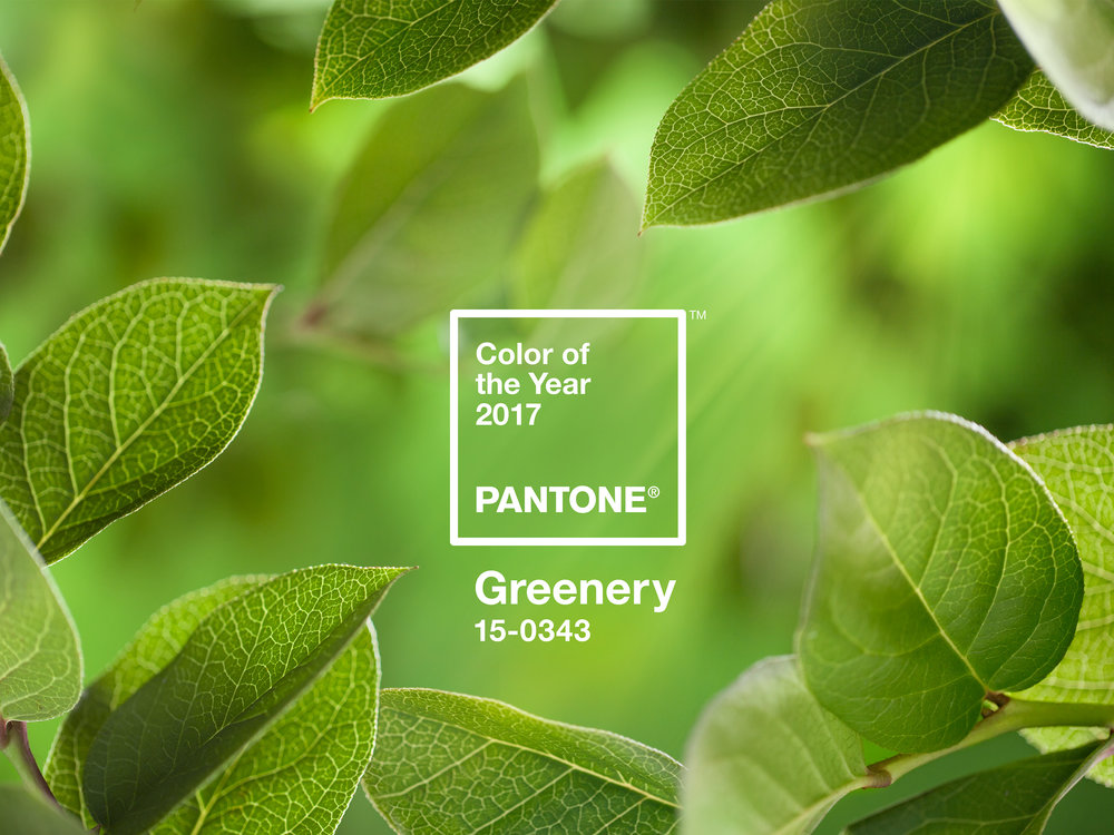 PANTONE-Color-of-the-Year-2017-Greenery-15-0343-leaves-2732x2048.jpg