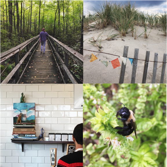 1) The Great Swamp. 2) A prayer for the beach. 3) Dinos in strange places. 4) Bee mine.