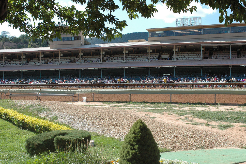 Ruidoso downs race track and casino the flamingo casino