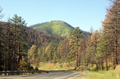 Taken near Bonito area, a short drive from the Ruidoso Downs Race Track.