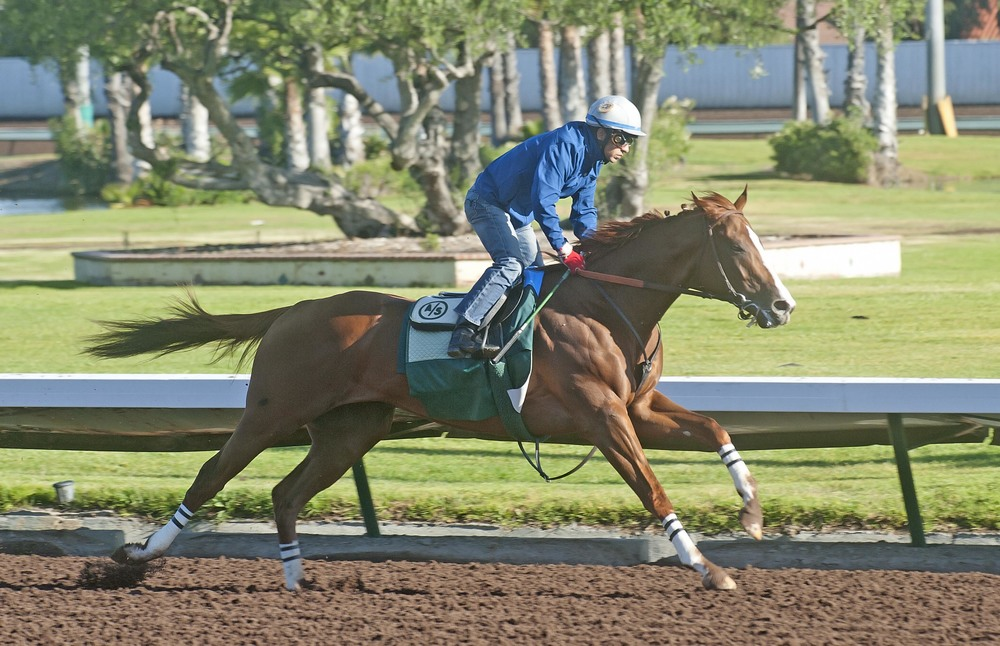 Los Alamitos Race Course - California Chrome final work_5.jpg