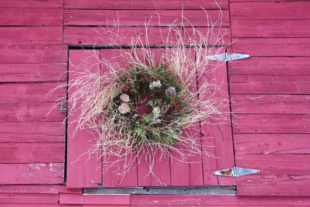Foraged arborvitae and winterberry holly with dried hydrangea, Norway spruce cones, red twig dogwood, and field weeds hanging on hayloft door of our barn