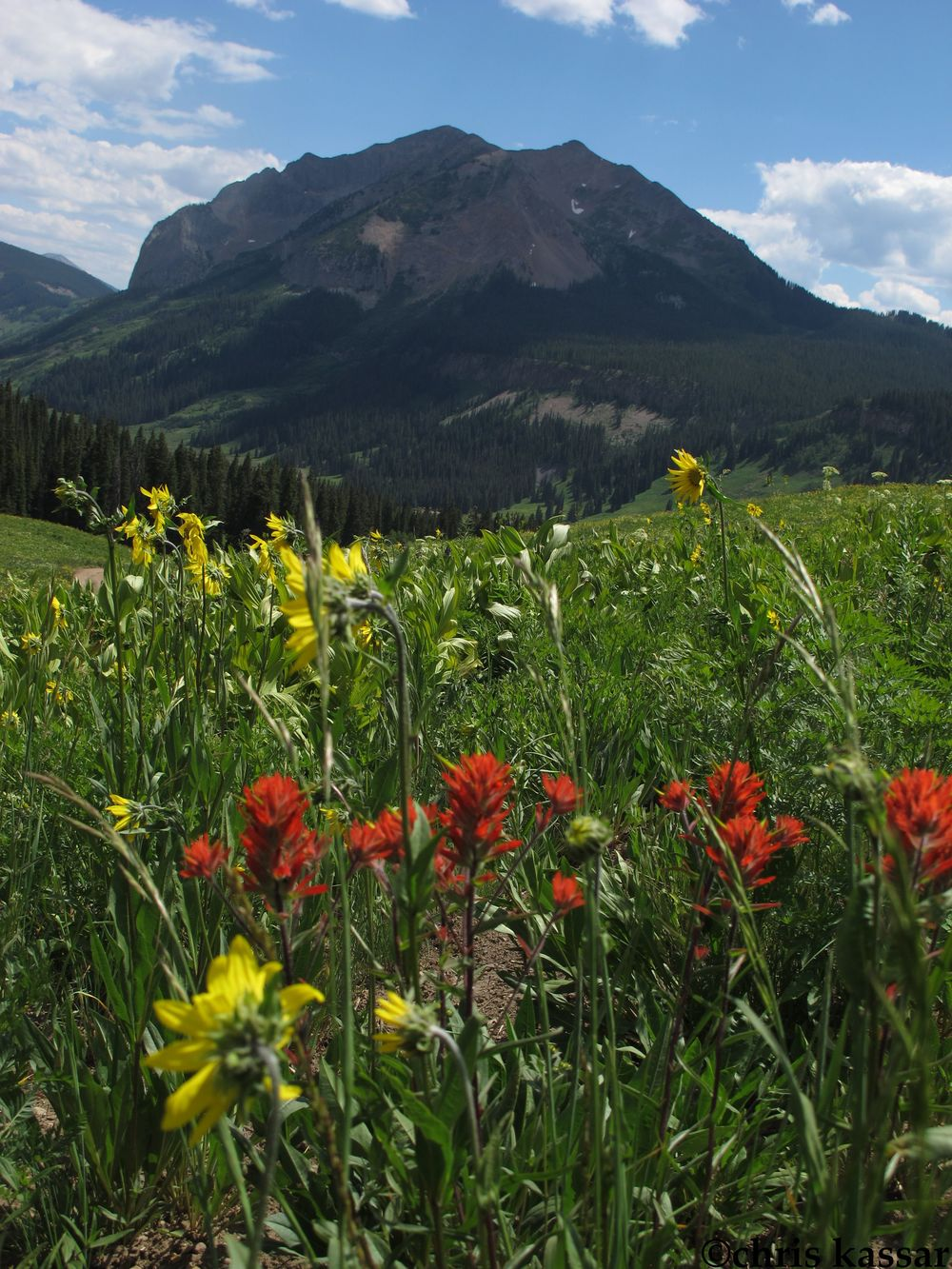gothic_crested_Butte_ck (2).jpg
