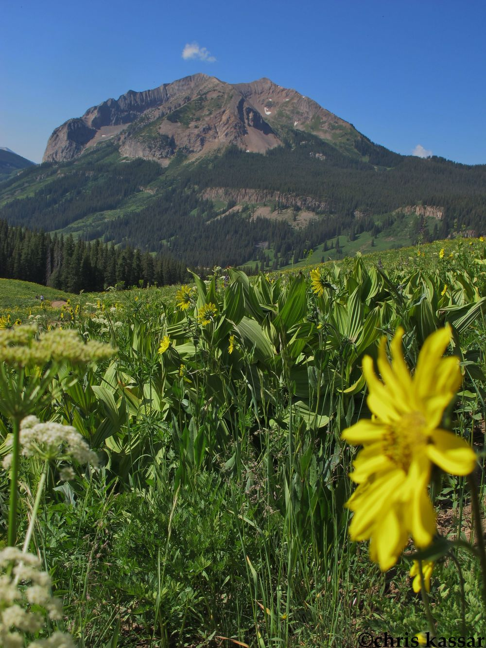 gothic_crested_butte_ck.jpg