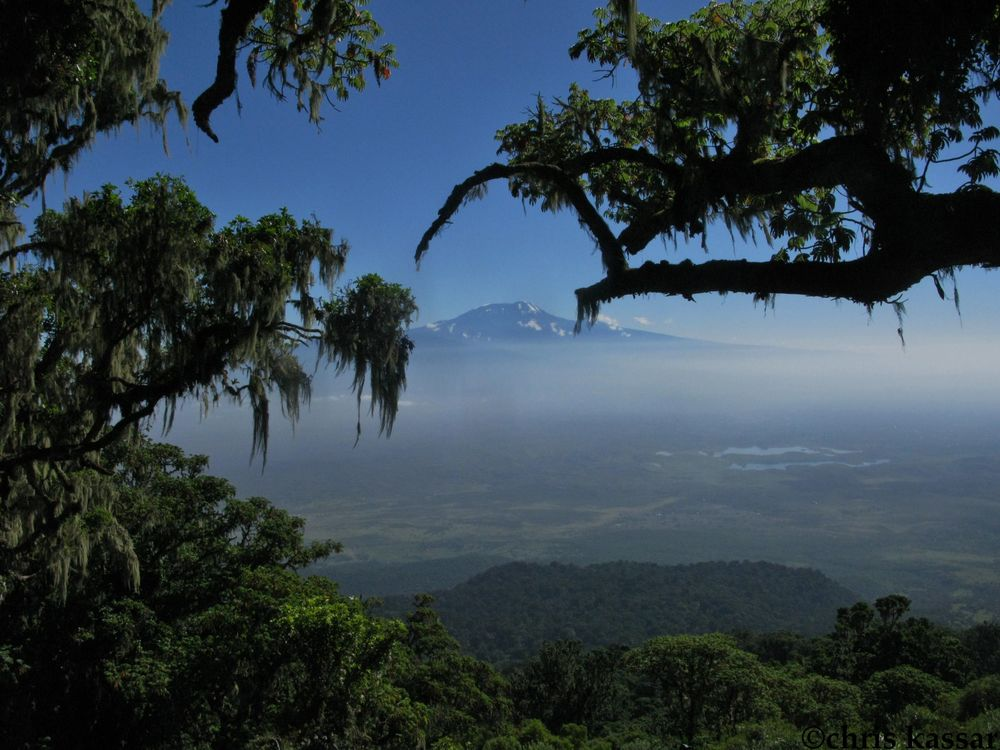 kili_from_meru.jpg