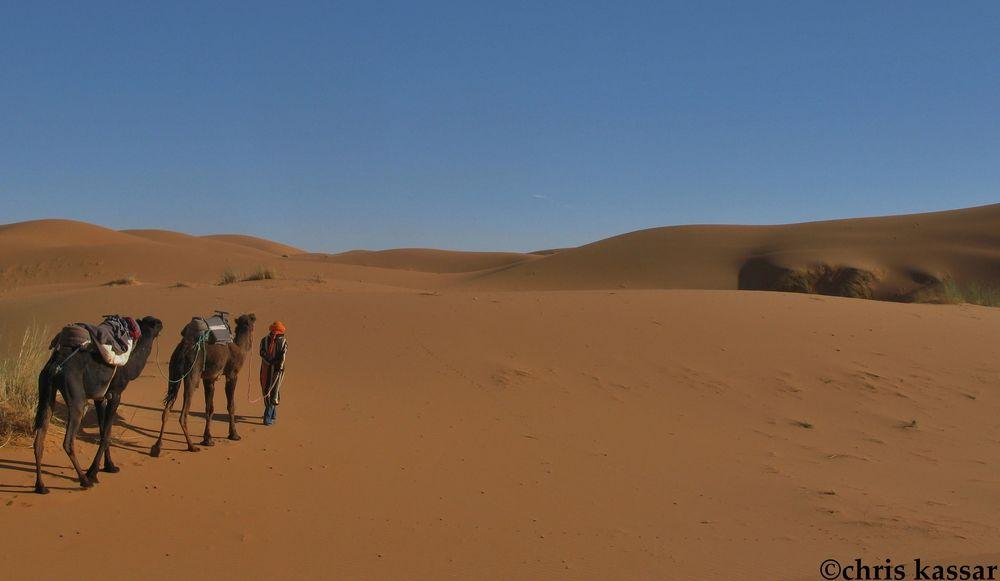 morocco_dunes (2).jpg