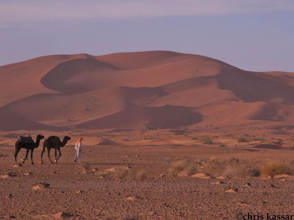 morocco_dunes (5).jpg