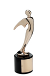 2014 Bronze Telly     Award Winner