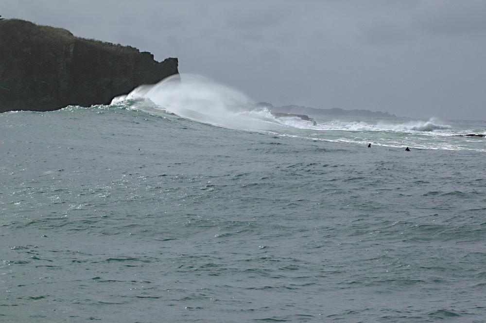 Elfin Cove2.JPG