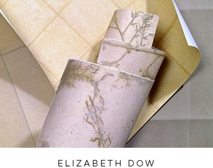 elizabeth_dow_wallcoverings.jpg