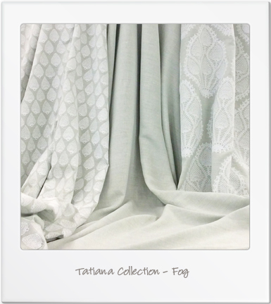 Fog Polaroid.jpg