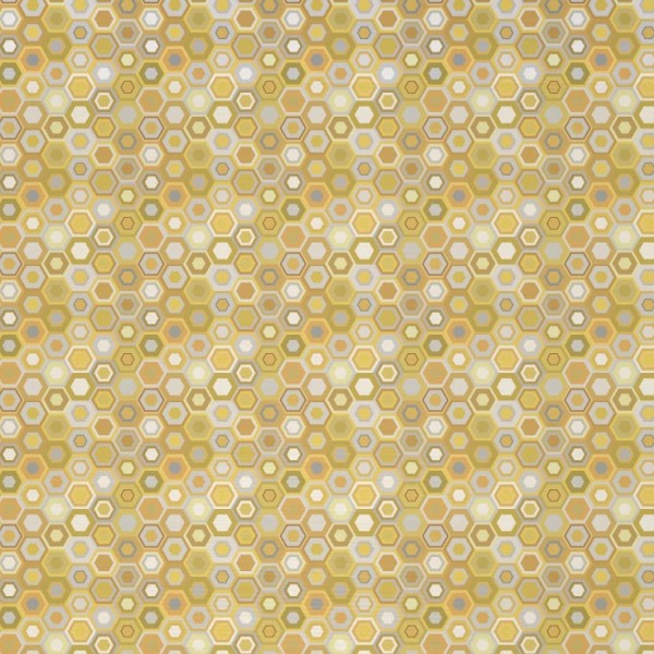 AA_WG_VNCO_02_coin-gold-600x600.jpg