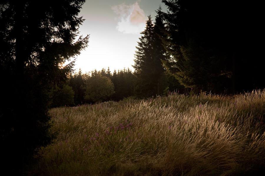 16_landscapes02-1_o.jpg