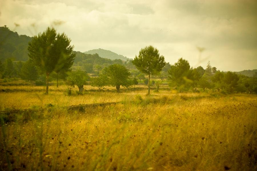 16_landscapes03_o.jpg